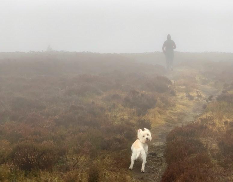 Cairn O' Mount, Aberdeenshire