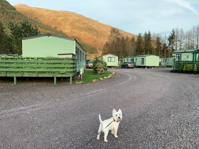 Loch Awe Holiday Park, Argyll Holidays