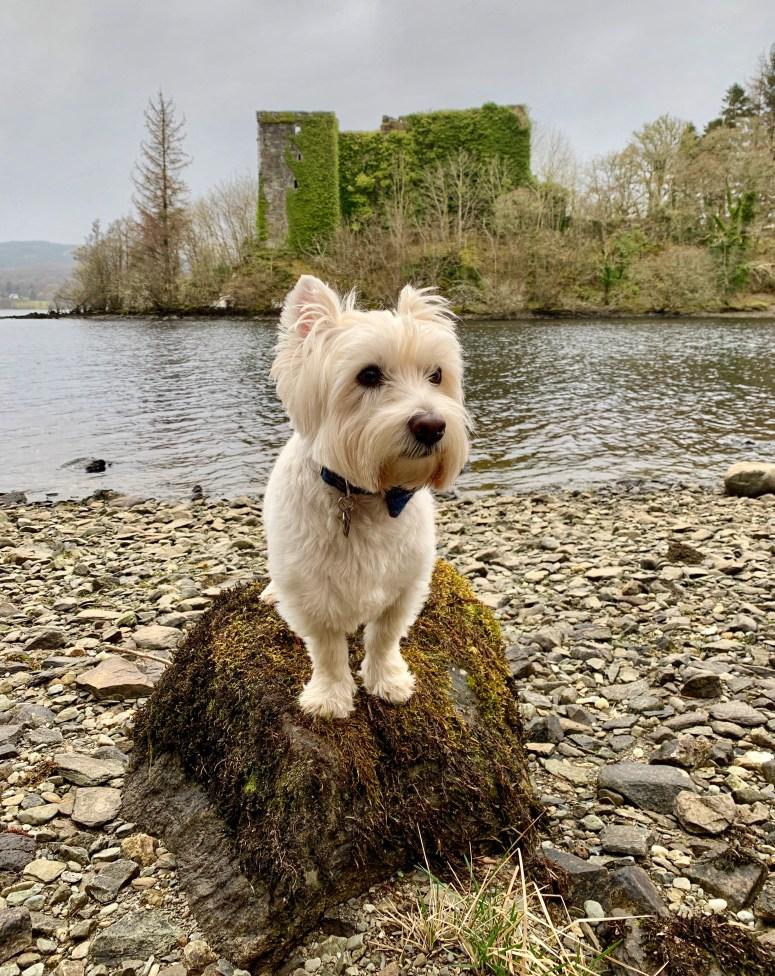 Innis Chonnel Castle, Loch Awe