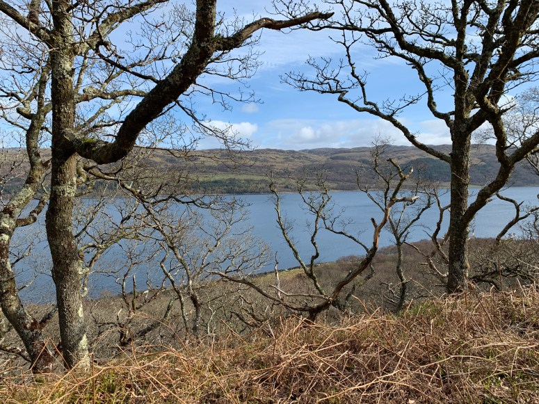Taynish National Nature Reserve