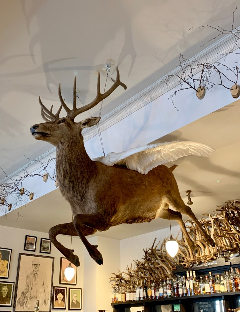 Flying Stag Bar, Fife Arms