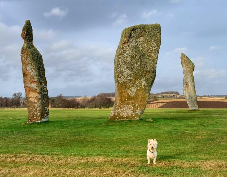 Lundin Links standing stones