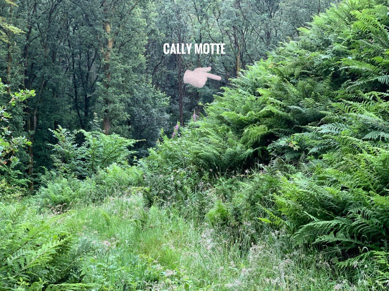 Cally Motte, Galloway Forest Park