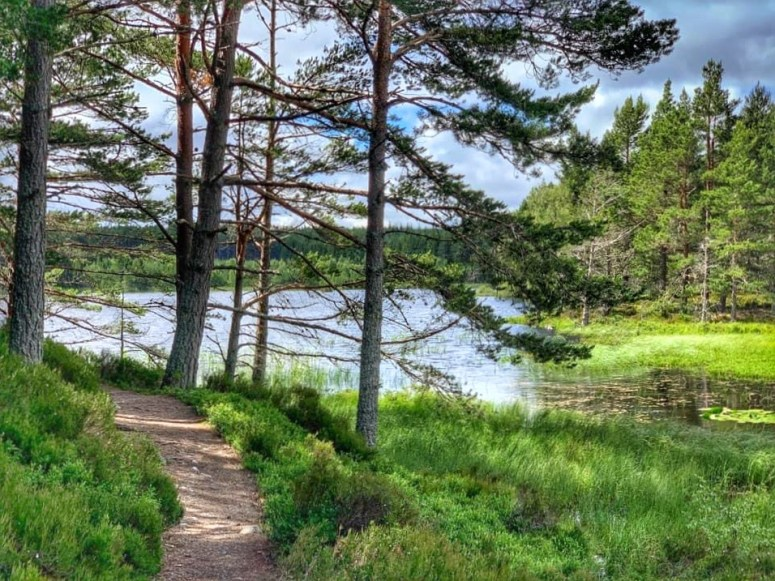 Uath Lochans Trail
