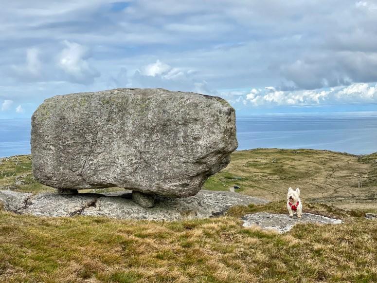 Queen's Stone, Ben Hogh, Coll