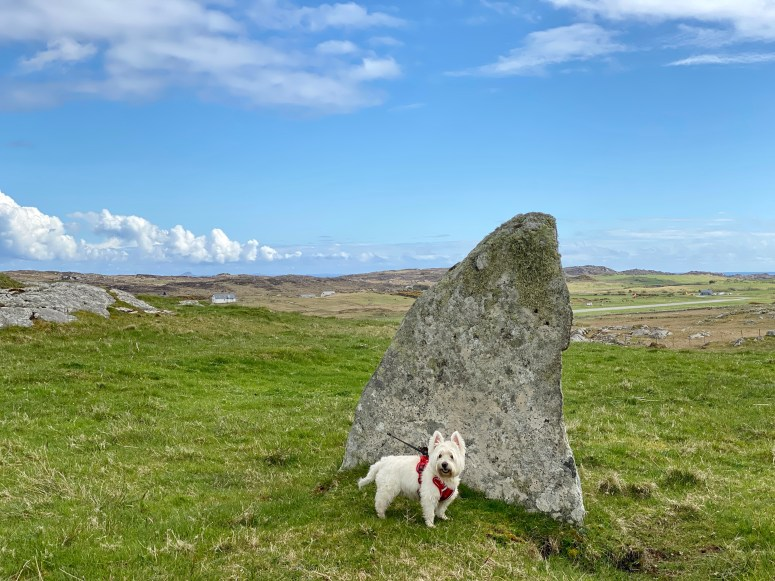 Totronald Standing stones, Isle of Coll