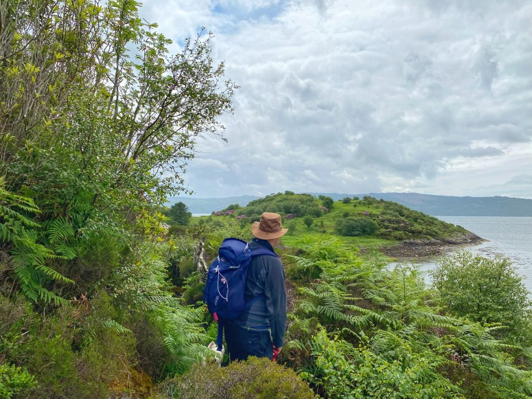 shore path, Glenan Forest