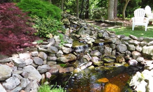 Waterfall In Back Yard
