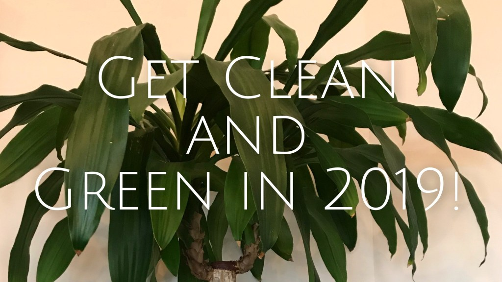 The Well-Intended: Clean and Green in 2019