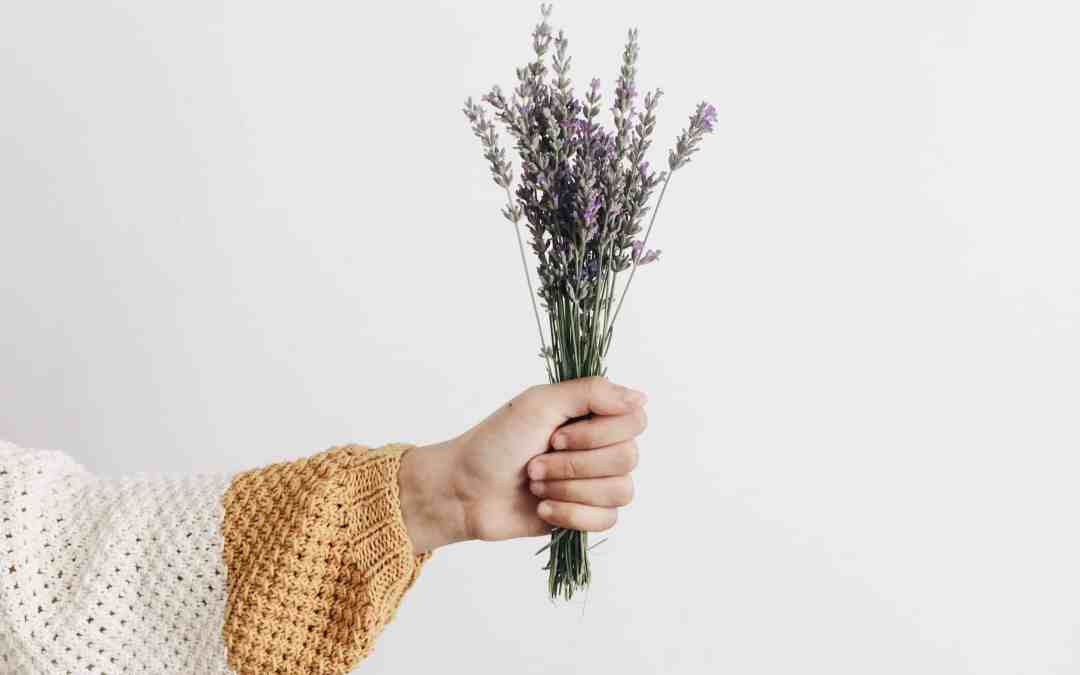 Let's talk about Lavender Essential Oil