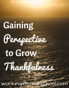 Gaining Perspective to Grow Thankfulness