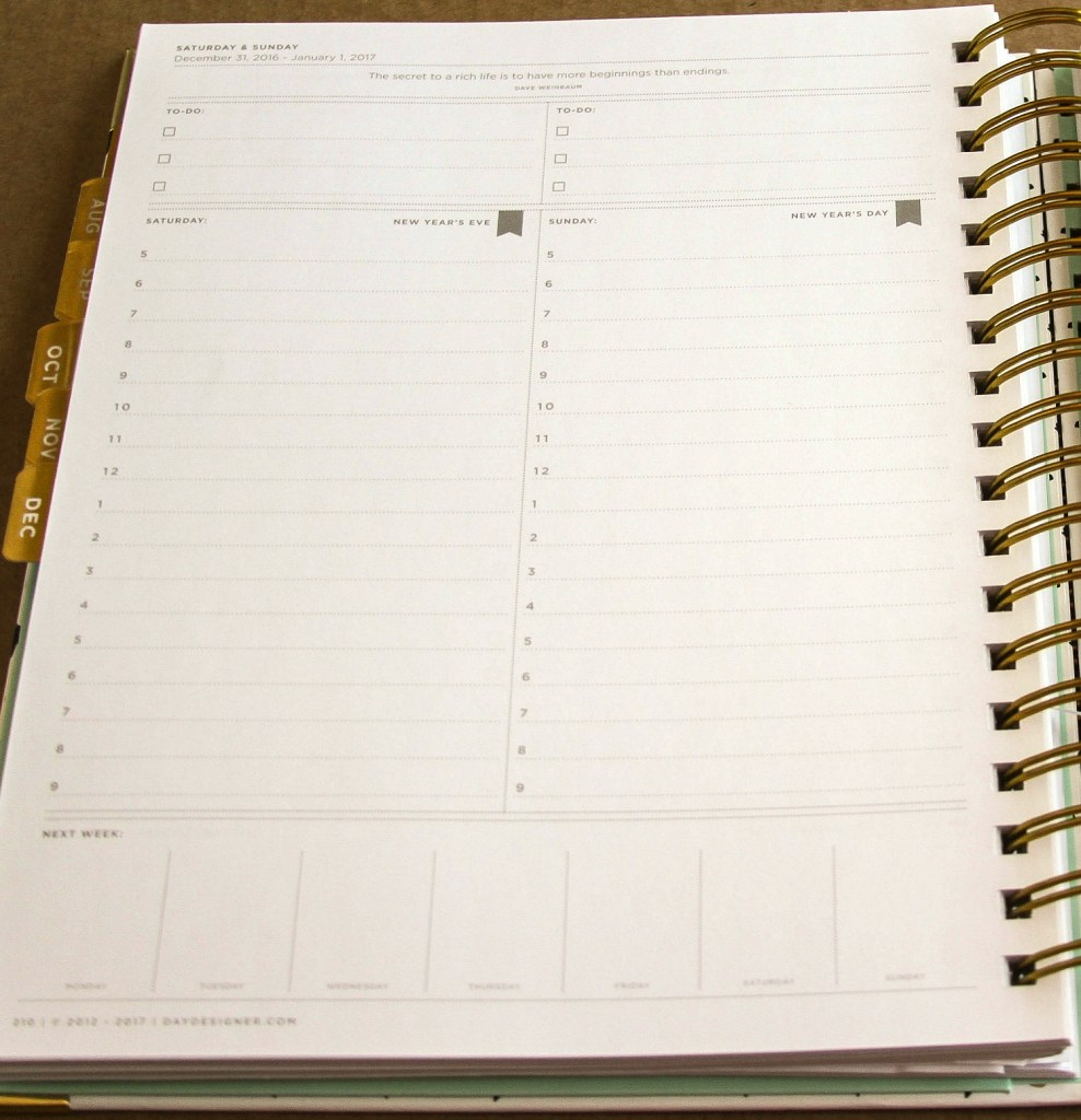 How you can use the Day Designer to get organized! So cute!