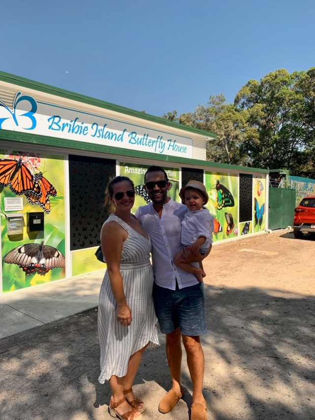 thewelltravelledfamily bribie island butterfly house