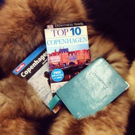 Copenhagen guidbooks and passport