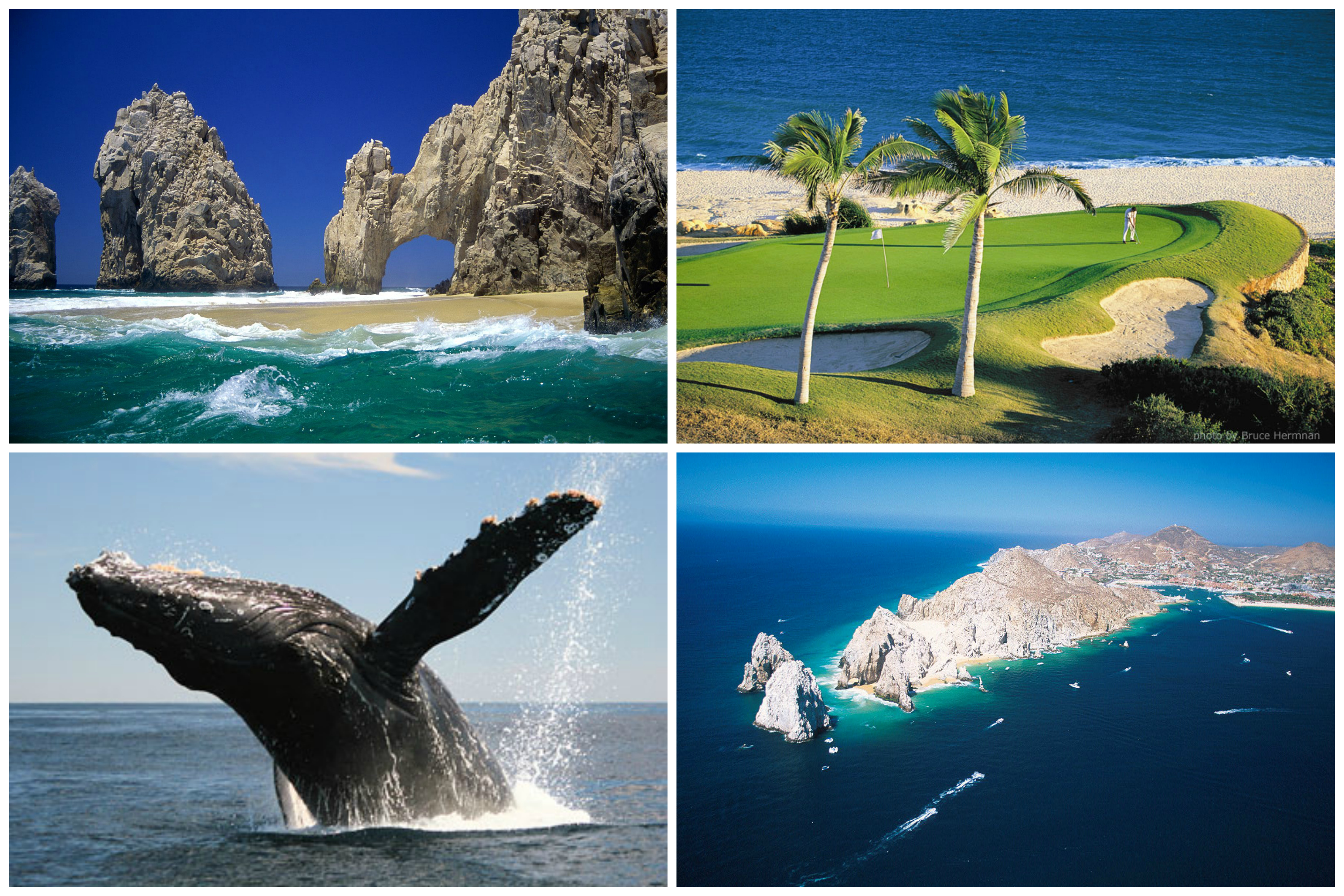 Cabo San Lucas The Well The Official Blog Of Zotry