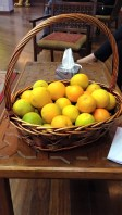 I steal many citrus fruits from campus.