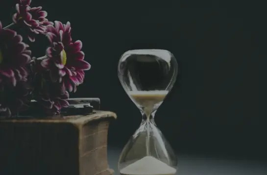 Read more about the article It's Never Too Late; You Are On Your Own Timeline