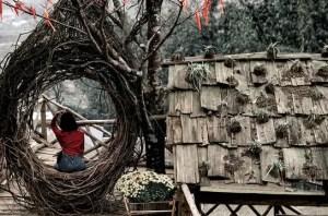 Birds Build Nests…Why Am I Nesting?