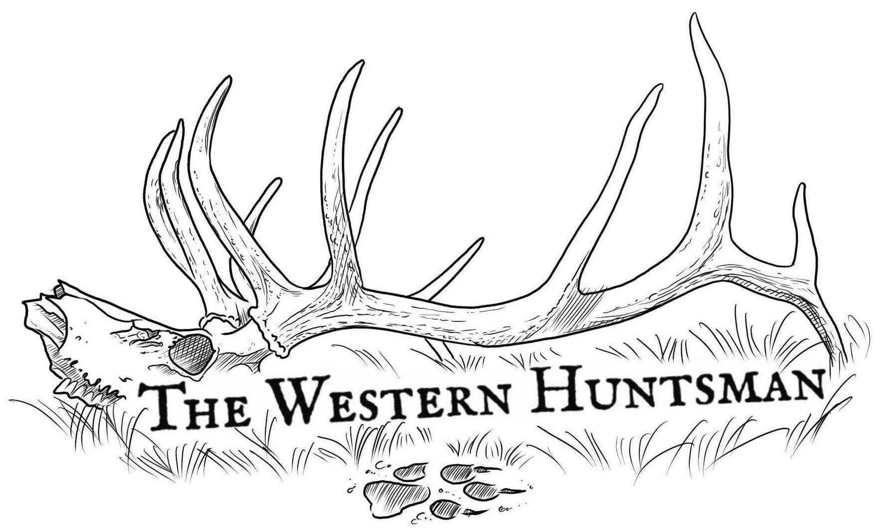 The Western Huntsman