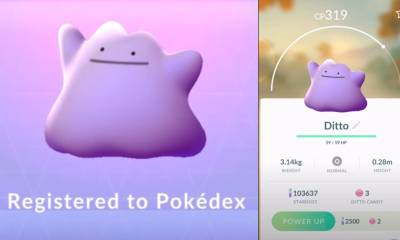 How to catch Ditto in Pokemon Go (July 2021)