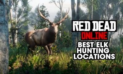 Best Elk Hunting Locations red dead online