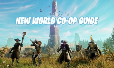 New World co-op guide