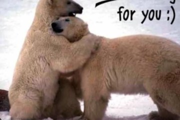 Hugs can help fight flu and colds