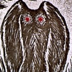 The Mothman: Man, Monster, Alien or Just a Big Bird