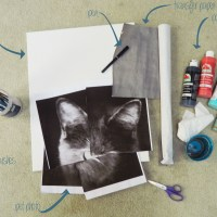 Geometric Pet Painting DIY