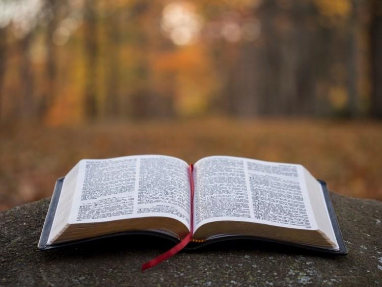 An open Bible. Photo: Aaron Burden. (Unsplash)
