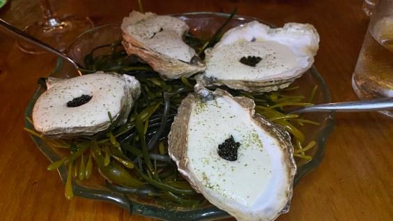 Caviar Oysters: Ariete Miami Post Quarantine