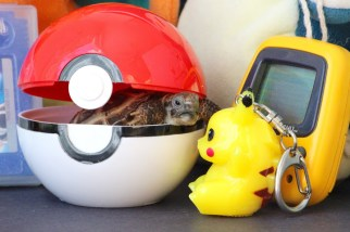 """""""Why is Pikachu so close yet so far?"""""""