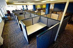 How the waste & idiocy of corporate office culture gave me the confidence to run my company