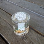 Cotton Bud Holder Seaside Shells Clear Acrylic