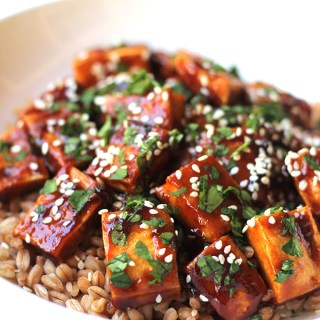 Super Easy Hoisin Tofu