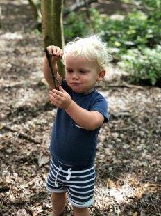 Vesper exploring wood