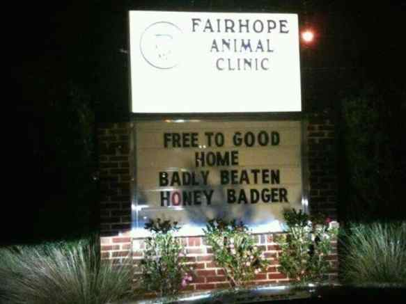 alabama-animal-clinic-pokes-fun-at-lsu-and-honey-badger