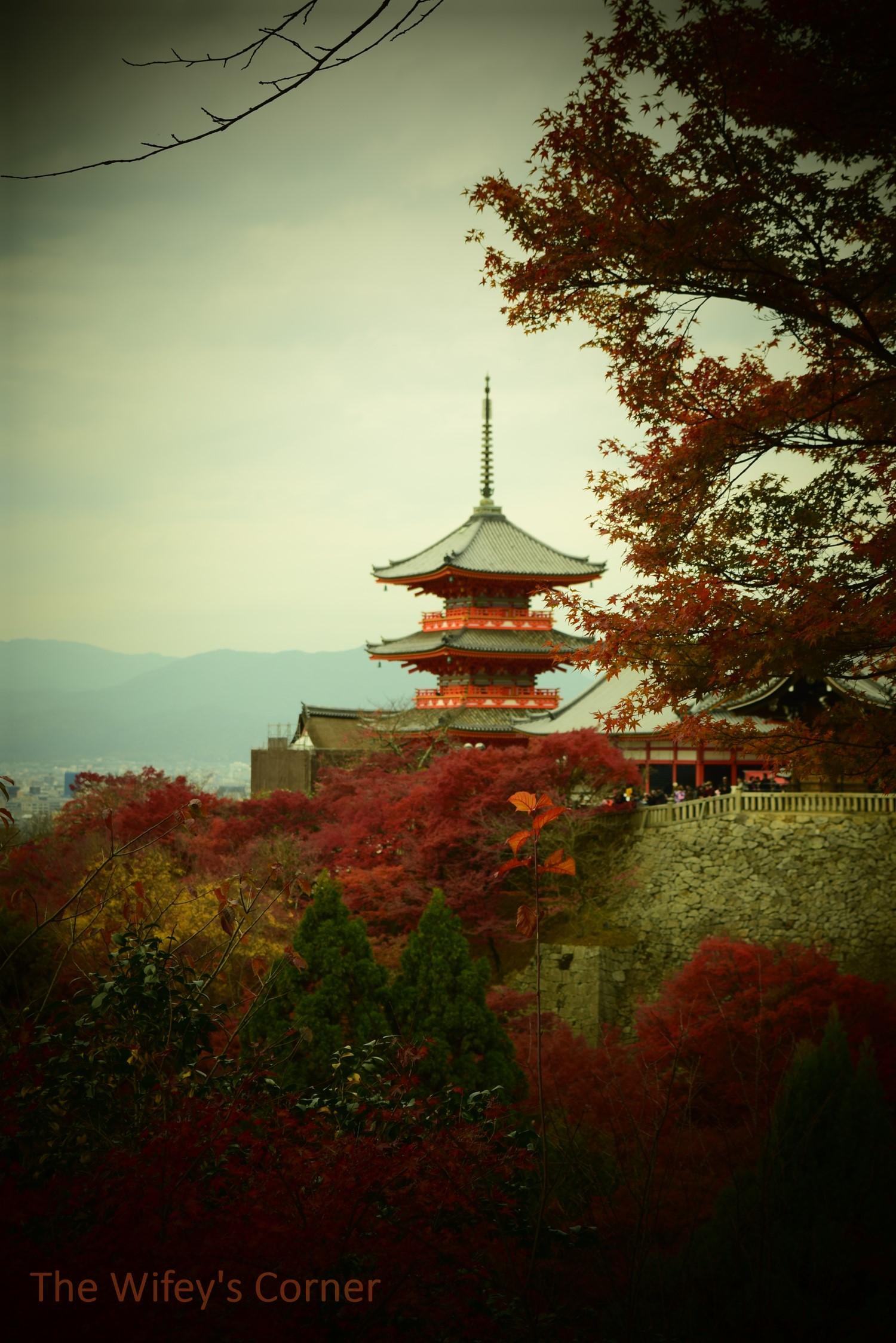 2017 Japan Trip - Day 2