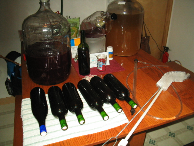 Eydie's Seven Bottles of Blackberry Wine (one is upright in the back)