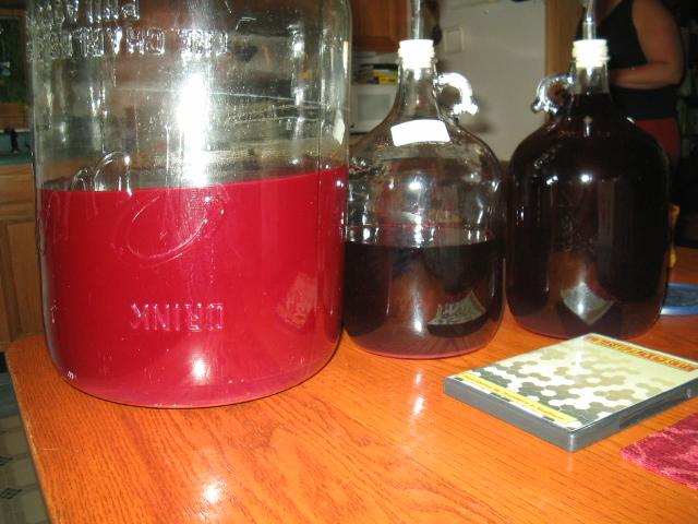 Wine Image #4