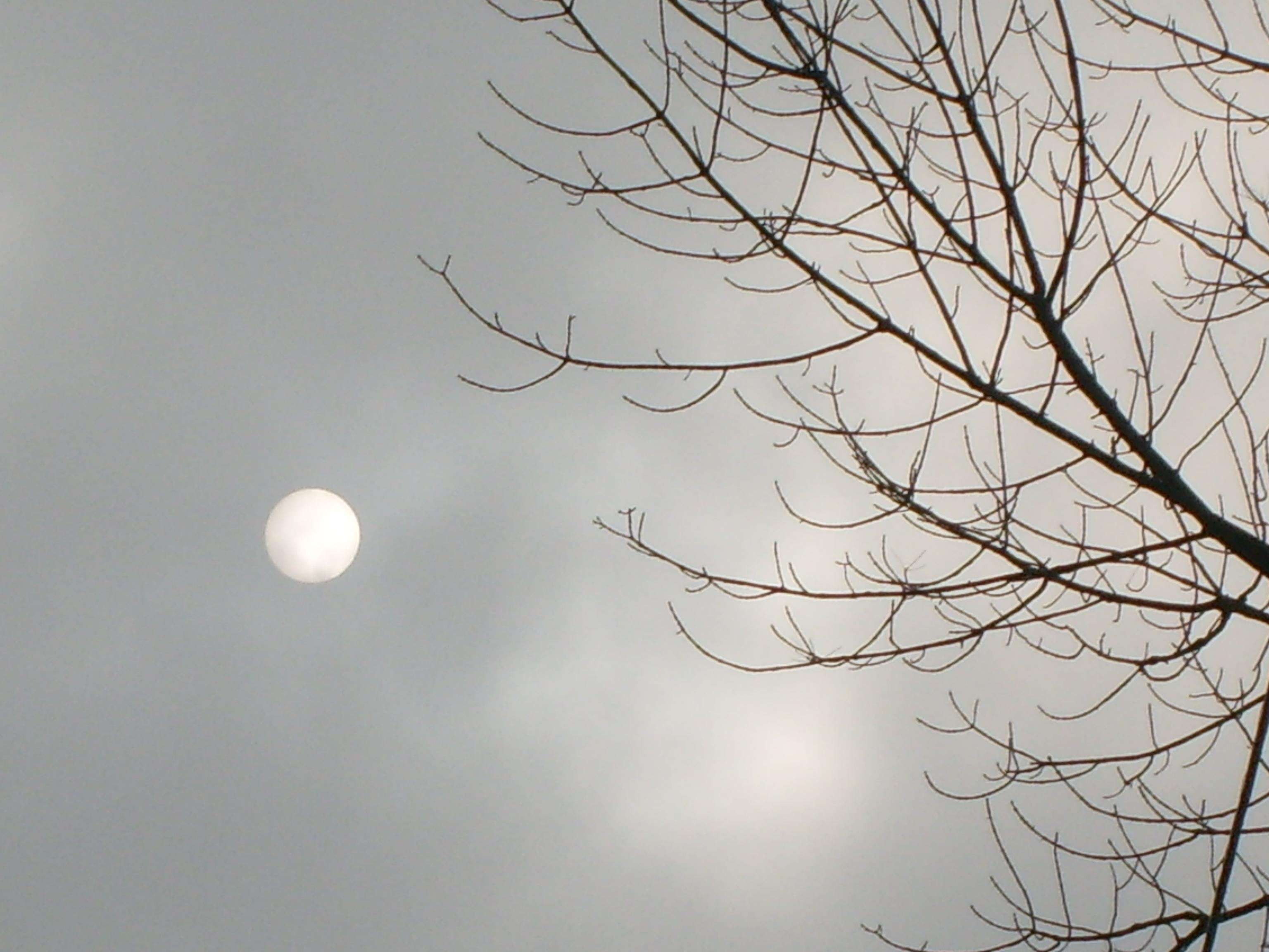 Ice Egg in the Sky