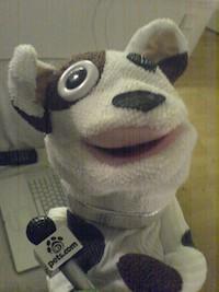 Pets_com_sock
