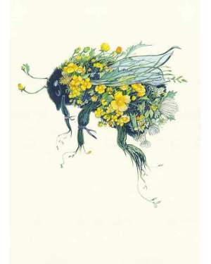 bumblebee illustration by Daniel Mackie The DM Collection