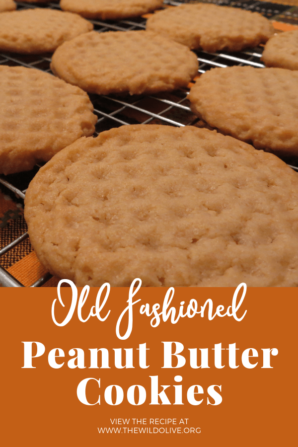 Old Fashioned Peanut Butter Cookies | Baking | Cookies
