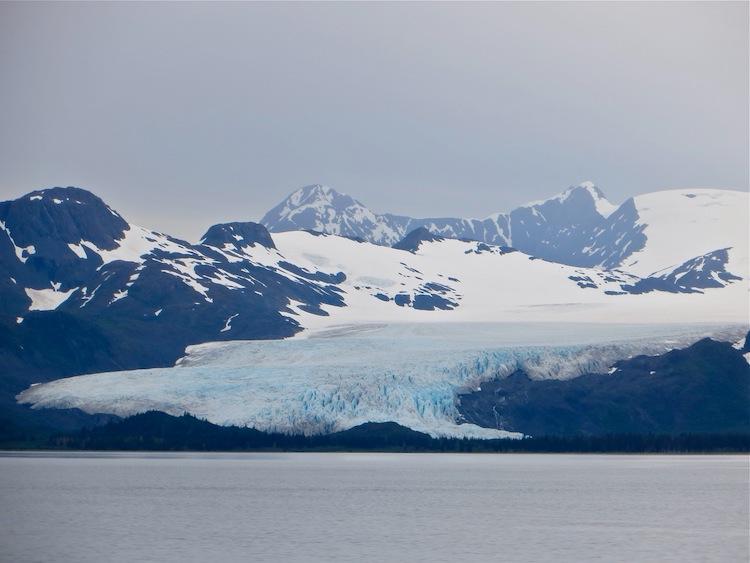 Glacier view on the 26 Glacier Cruise
