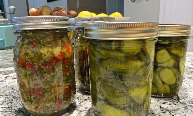 Quick and Easy Dill Pickle Chips – a Small Batch Recipe