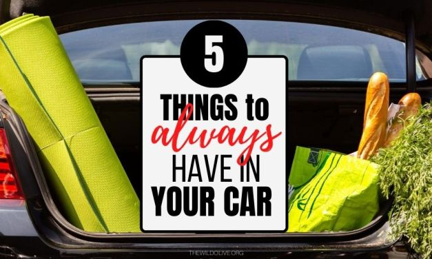 5 Things to Always Have in Your Car