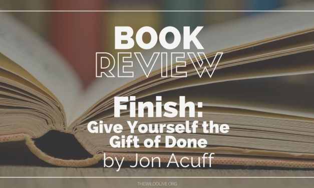 Book Recommendation:  Finish by Jon Acuff