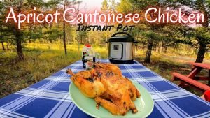 Instant Pot Apricot Cantonese Chicken