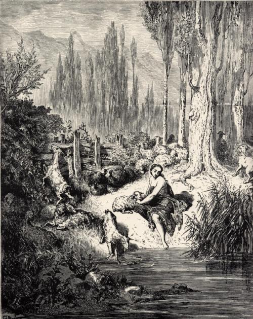 Charles Perrault Donkeyskin Gustave Doré illustration
